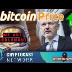 The Bitcoin News Show #105 – Bitcoin over 5k, We're all Hodlnaut, Assange's BTC Donations