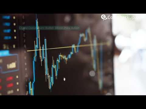 News: Crypto Conundrum: Bullish Bitcoin Price Action Halts Altcoin Season In Its Tracks