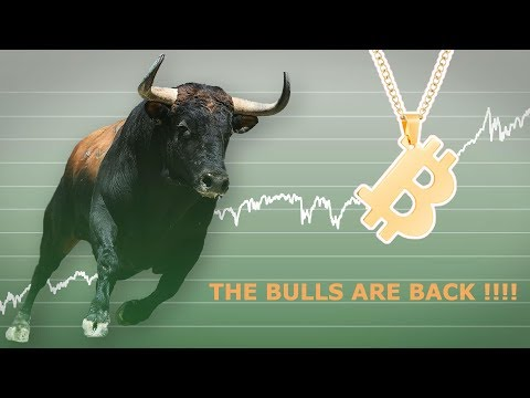 THE BITCOIN BULLS ARE BACK!!! FIDELITY BREAKS IT DOWN! NYSE OWNER BUYING!