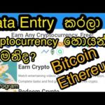 Earn cryptocurrency with data entry jobs complete simple data entry jobs/bitcoin,Ethereum,