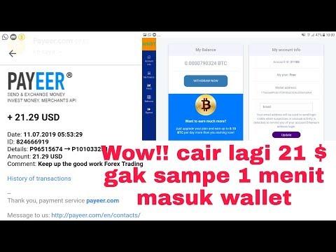 Panen 21$ langsung masuk wallet mining bitcoin ownbtc