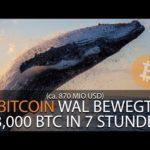 BITCOIN WAL BEWEGT 83,000 BTC IN 7H (870 MIO USD)