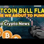 Bitcoin Bull Flag - Are We About to Pump? Crypto News