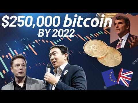$250,000 BTC by 2022 | Elon Musk Supports Andrew Yang | Bitcoin News