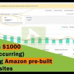 How to make money online with Amazon | Earn $1000 (reoccurring) using Amazon pre-built websites