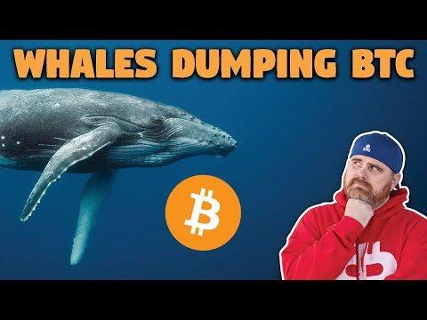 Bitcoin Whales Dumping Bitcoin