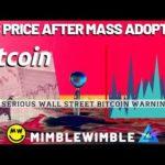 BTC Price After MASS ADOPTION | What is Mimblewimble? Winklevoss Twins Bitcoin News