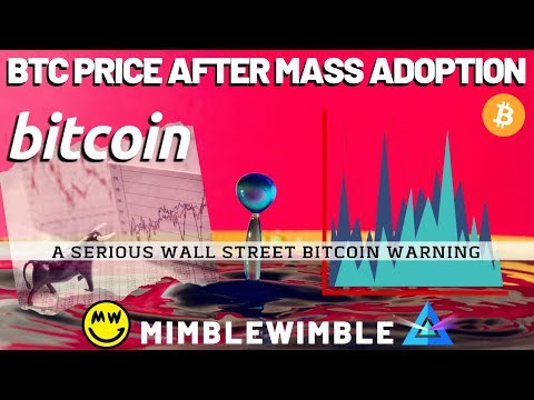 BTC Price After MASS ADOPTION   What is Mimblewimble? Winklevoss Twins Bitcoin News
