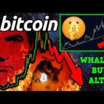 BITCOIN $2 BILLION DUMP or CSW FUD? 😱 Whales SECRETLY Accumulate ALTCOINS!?