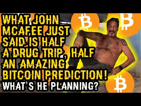 What JOHN MCAFEE Just Said Is ½ DRUG TRIP, ½ AMAZING BITCOIN Prediction! This Is His BEST CALL YET!