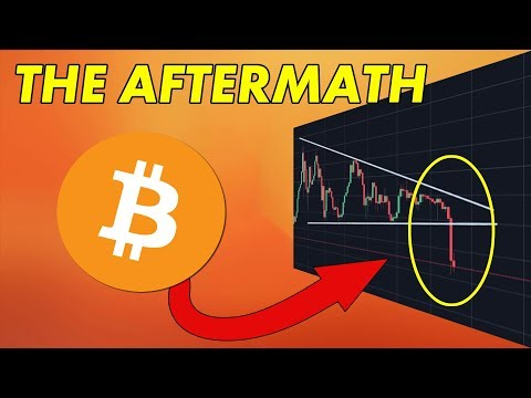 Bitcoin Falls...Now What? | Cryptocurrency News
