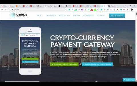 Best Bitcoin Payment Gateway