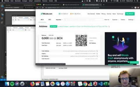 Offline Wallet on Bitcoin Cash (be.cash)