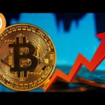 Bitcoin Relief Rally - Will It Last? | Cryptocurrency News