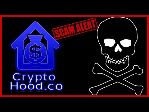Cryptohood did a Exit Scam on Amfeix Investors