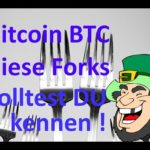 Bitcoin die erste ECHTE dezentrale Kryptowährung! 5 bekannte Forks die Du kennen solltest.