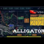 Binary Options Strategy 2020 – 100% WIN GUARANTEED – How to make money online