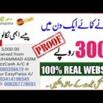 Earn 3000 PKR Daily || Make money online || New high profit website || Earn money with easypaisa🤑