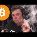 Elon Musk talks bitcoin!
