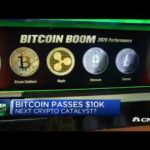 What Everyone Must Know About Will Bitcoin Rally Again