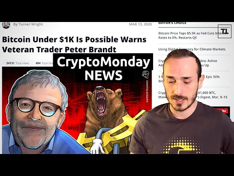 Cosa succederà ora a BITCOIN? - CryptoMonday NEWS w11/'20