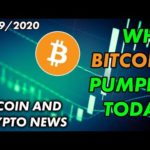 Why Bitcoin Pumped Today | Bitcoin and Cryptocurrency News