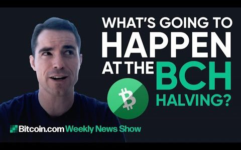 What's going to happen at the BCH Halvening, rumors about Bitcoin.com – Bitcoin.com Weekly News Show