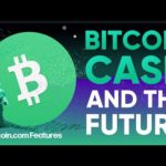 Interview with Roger Ver on The Future of Bitcoin Cash – Bitcoin.com Features