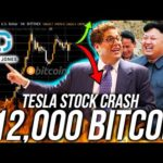 BITCOIN HALVING BULLTRAP? TESLA STOCK CRASH! Business & Finance News! DOWJ BTC ETH Price Analysis