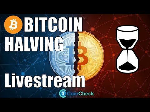 BITCOIN HALVING Countdown - Was passiert mit dem Preis und dem Mining? Livestream