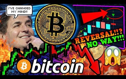 BITCOIN MAJOR REVERSAL IMMINENT!!? Why BEARS are WRONG!! Mark Cuban ADMITS BTC = Store of Value!