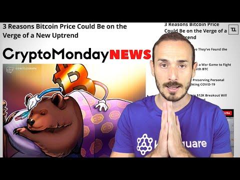 L'Orso si è addormentato? BITCOIN - CryptoMonday NEWS w23/'20