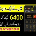 Earn 6400 PKR Daily Without Investmen 2020 | How To Earn Money Online At Home