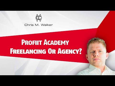 Make Money Online Fast   Freelancing Or Agency?   Your Questions Answered