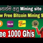 New Free Bitcoin Mining Website 2020 | Free 1000 Gh/s | automining.cc || SL Rush