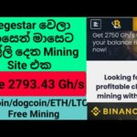 bestmining 2020 New Bitcoin Mining Website   $80+ Earn   Payment Proof   No Investment sinhala