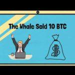 Crypto Whiteboard Animation, Crypto News, Crypto Market Update, Bitcoin News.