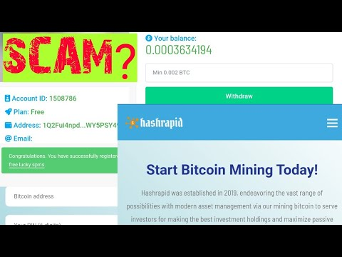 Hashrapid.io payment proofs (100+% scam or legit?) Don't join yet!!!