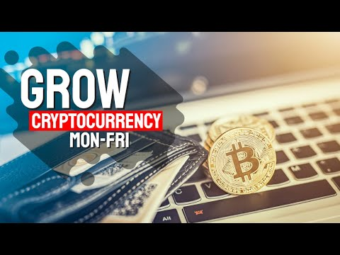 What Does Cash FX Group Review – Scam or Legit? - The Bitcoin Mean?