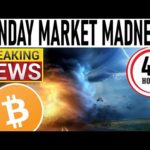 MONDAY MARKET MADNESS FOR BITCOIN! WILD RIDE COMING! KUCOIN INSIDE JOB! DEX'S WILL DESTROY THESE!