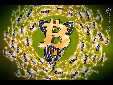Bitcoin could flippen PayPal on bullish news from    PayPal
