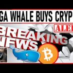 TD AMERITRADE SAYS BUY BITCOIN! MEGA WHALE BUYS $300m IN CRYPTO! MAX YOUR CRYPTO PROFITS WITH THIS!