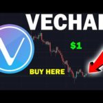 HUGE CRYPTO NEWS: What Will Happen to VeChain (VET)? Still Worth it? $1