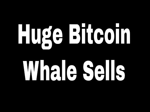 Cryptocurrency News: Bitcoin Whale Just Shorted $100M Worth of BTC