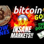 INSANE BITCOIN and TRADITIONAL MARKET UPDATE!! Crypto BTC TA price prediction, analysis news trading