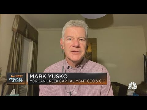 There's an irrational fear that a government will ban cryptocurrency: Yusko