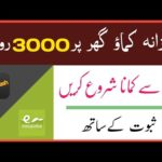 Earn Daily 3000 PKR | live payment proof| make Money Online | Xeedigital website in Pakistan