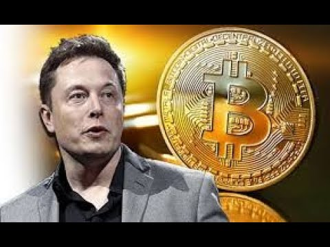 Breaking News Elon Musk on bitcoin Cryptocurrency Is Potentially The Cash Of The Future