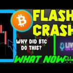 BITCOIN PRICE CRASHES QUICK! WHAT IS NEXT FOR BTC?