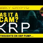 XRP PUMP - Was It All A Scam? | Crypto Chat with Cheeky Crypto Live